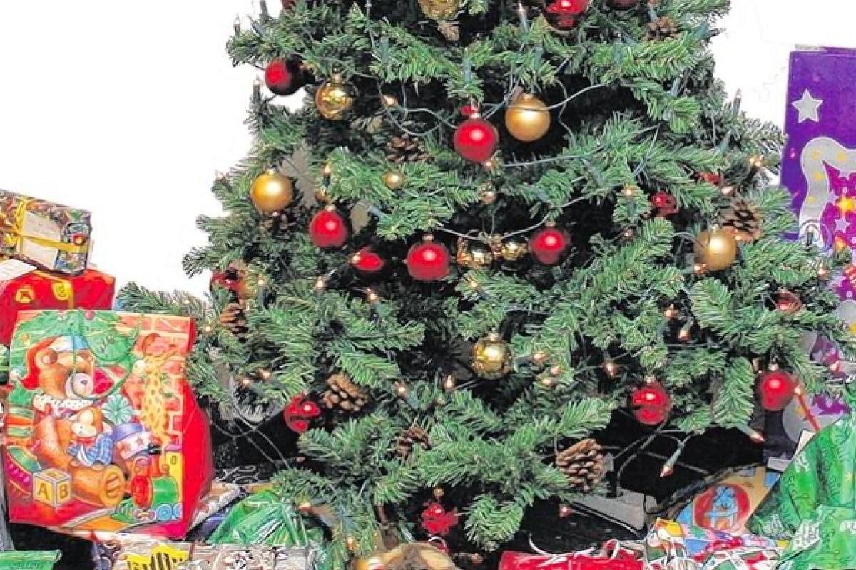 Weihnachtsbaum Echt Oder Künstlich.Der Weihnachtsbaum Echt Künstlich Oder Gar Keinen Nrz De