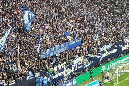 Schalke: Fanklub-Verband ist entsetzt über Metzelder-Plakat