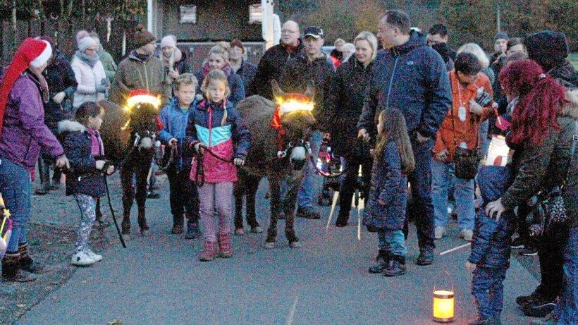 Tierheim Wesel erstrahlt bei Lichterfest in hellem Glanz - NRZ