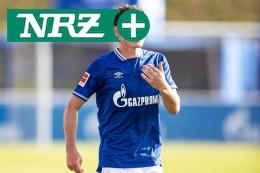 Schalke 04 und Sebastian Rudy: Vernunft würde helfen